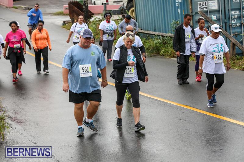 Butterfield-Vallis-5K-Run-Walk-Bermuda-February-7-2016-107