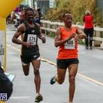 Butterfield & Vallis 5K Run Walk Bermuda, February 7 2016-141