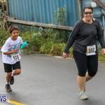 Butterfield & Vallis 5K Run Walk Bermuda, February 7 2016-88