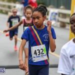 Butterfield & Vallis Race Juniors Bermuda, February 7 2016-98