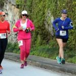 Ed Sherlock 5 Mile Road Race Sunday Bermuda Feb 17 2016 (15)