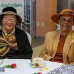 Kings & Queens Productions Big Hats & High Tea Social Bermuda, February 21 2016-29
