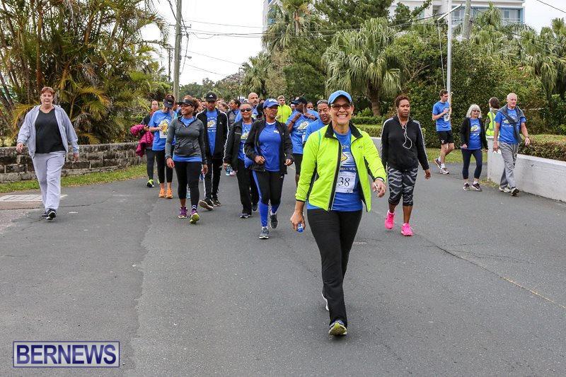 PALS-Walk-Bermuda-February-21-2016-107