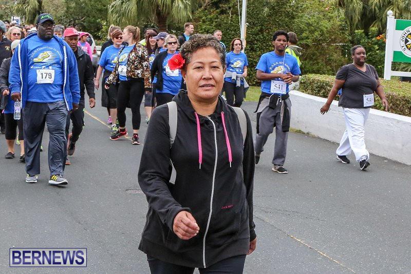 PALS-Walk-Bermuda-February-21-2016-141