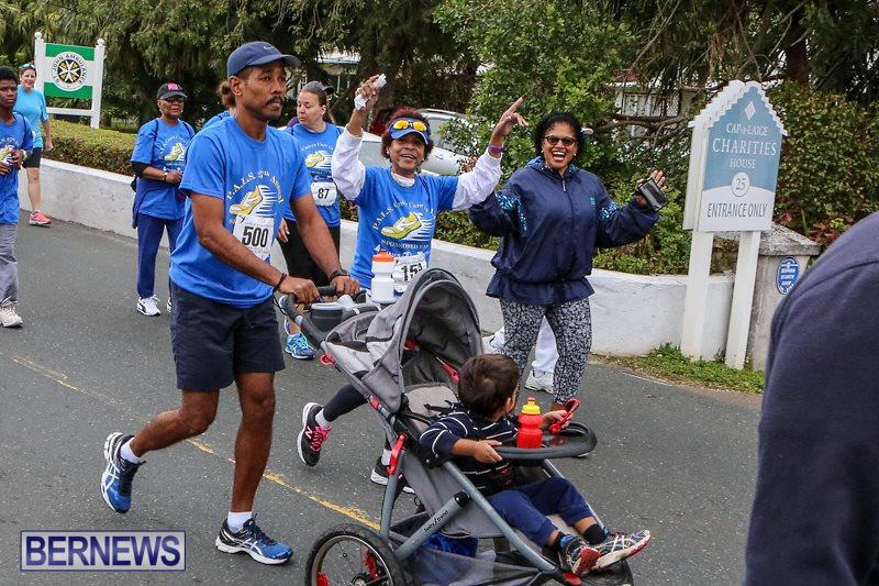 PALS-Walk-Bermuda-February-21-2016-156