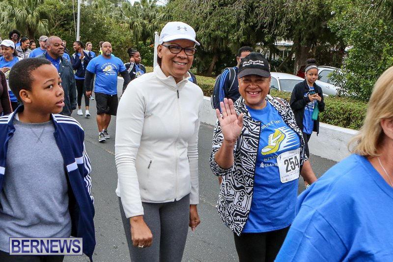 PALS-Walk-Bermuda-February-21-2016-165