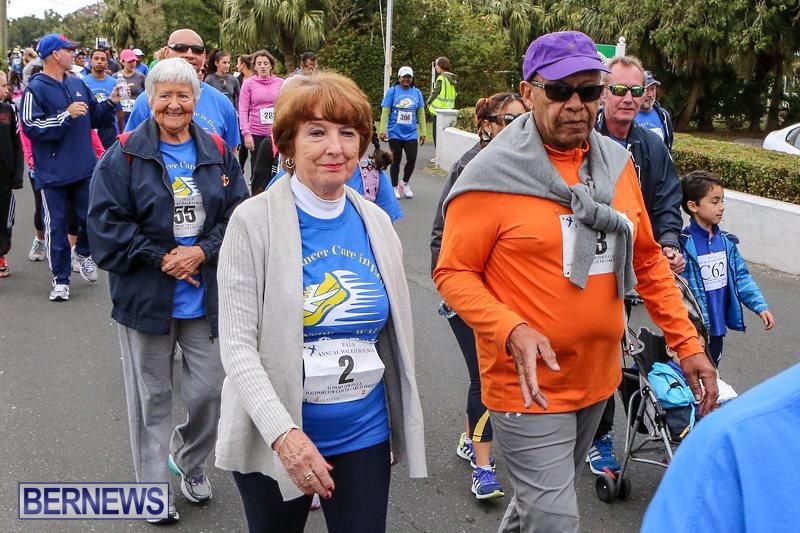 PALS-Walk-Bermuda-February-21-2016-180
