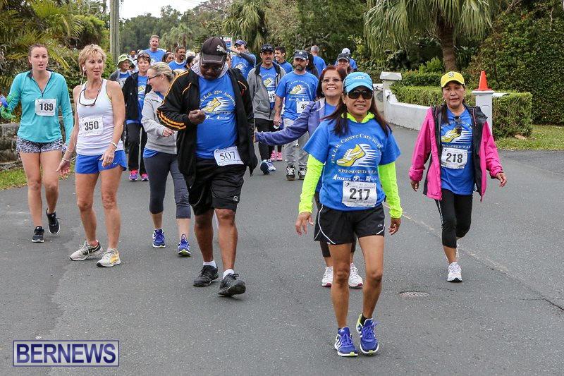 PALS-Walk-Bermuda-February-21-2016-190