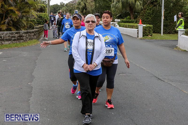 PALS-Walk-Bermuda-February-21-2016-208