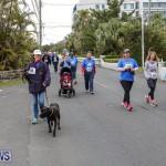PALS Walk Bermuda, February 21 2016-222