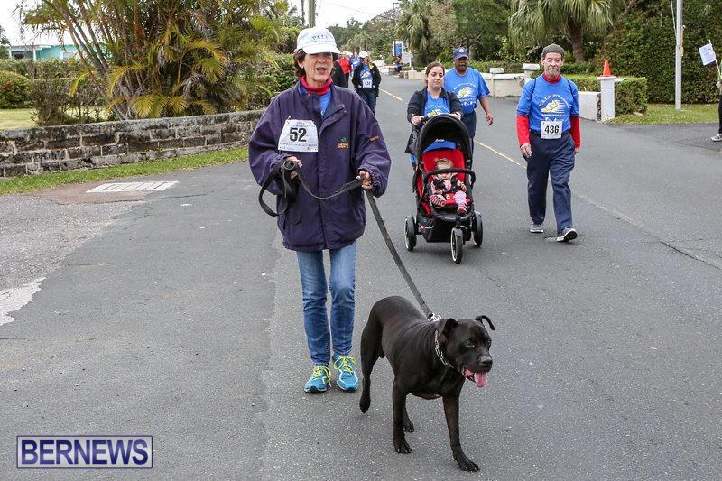 PALS-Walk-Bermuda-February-21-2016-223