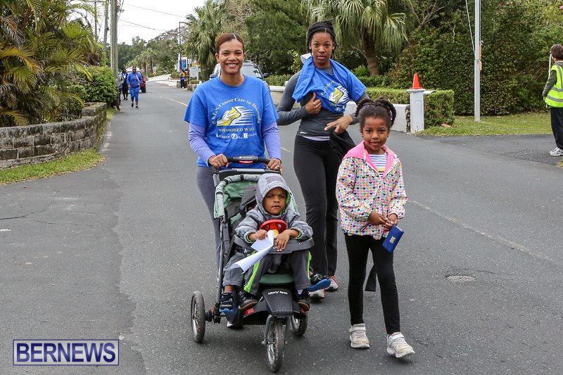 PALS-Walk-Bermuda-February-21-2016-238