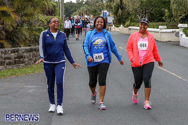 PALS-Walk-Bermuda-February-21-2016-71