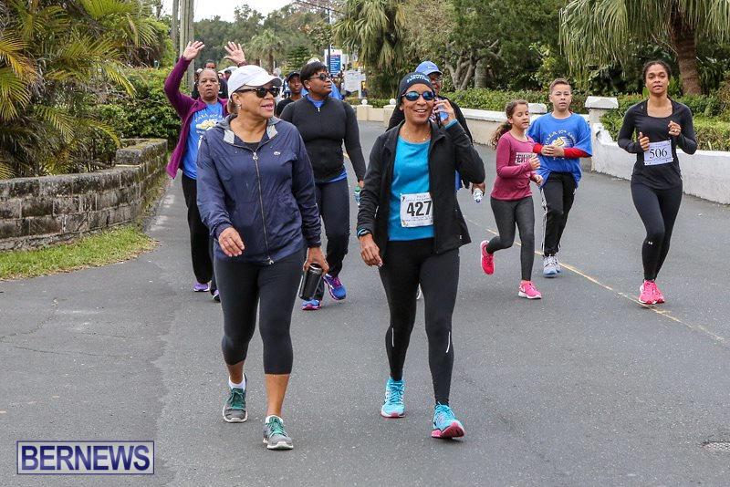 PALS-Walk-Bermuda-February-21-2016-74