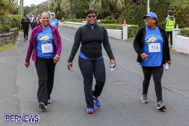 PALS-Walk-Bermuda-February-21-2016-78