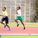 Pacers Track Meet Bermuda Feb 10 2016 (13)
