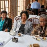 St George's Parish Council Seniors Tea Bermuda, February 27 2016-11