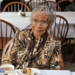 St George's Parish Council Seniors Tea Bermuda, February 27 2016-12