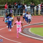 Telford Electric Magic Mile Bermuda, February 27 2016-1