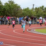 Telford Electric Magic Mile Bermuda, February 27 2016-103