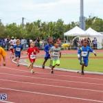 Telford Electric Magic Mile Bermuda, February 27 2016-168