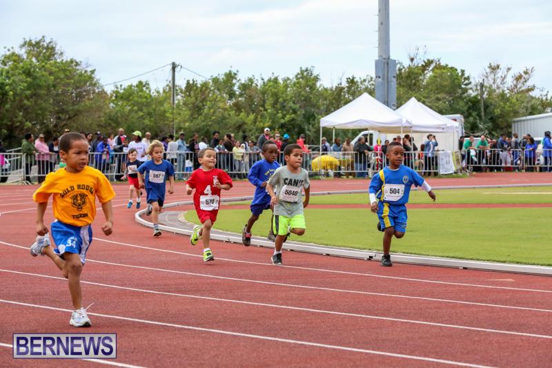 Telford-Electric-Magic-Mile-Bermuda-February-27-2016-168