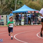 Telford Electric Magic Mile Bermuda, February 27 2016-171