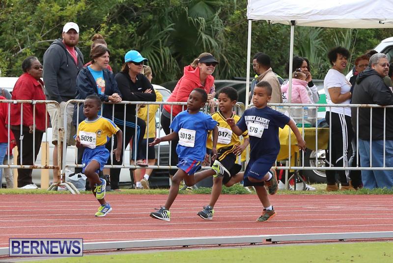 Telford-Electric-Magic-Mile-Bermuda-February-27-2016-172