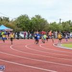 Telford Electric Magic Mile Bermuda, February 27 2016-174