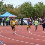 Telford Electric Magic Mile Bermuda, February 27 2016-176