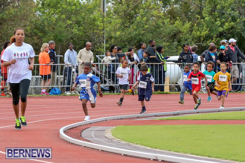 Telford-Electric-Magic-Mile-Bermuda-February-27-2016-185