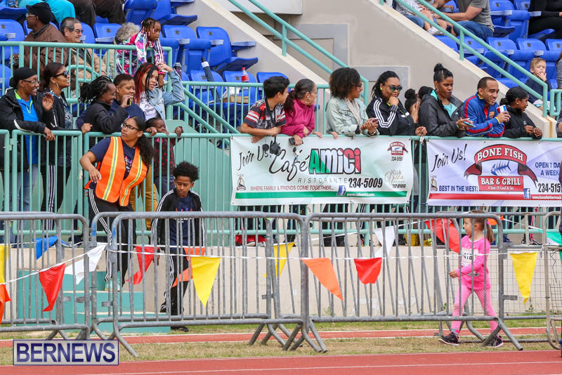 Telford-Electric-Magic-Mile-Bermuda-February-27-2016-21
