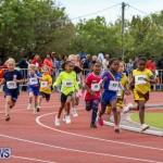 Telford Electric Magic Mile Bermuda, February 27 2016-210