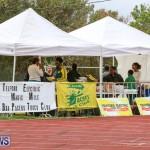 Telford Electric Magic Mile Bermuda, February 27 2016-22