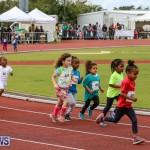 Telford Electric Magic Mile Bermuda, February 27 2016-34