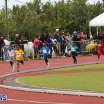 Telford Electric Magic Mile Bermuda, February 27 2016-45