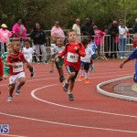 Telford Electric Magic Mile Bermuda, February 27 2016-53
