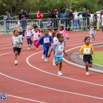 Telford Electric Magic Mile Bermuda, February 27 2016-6