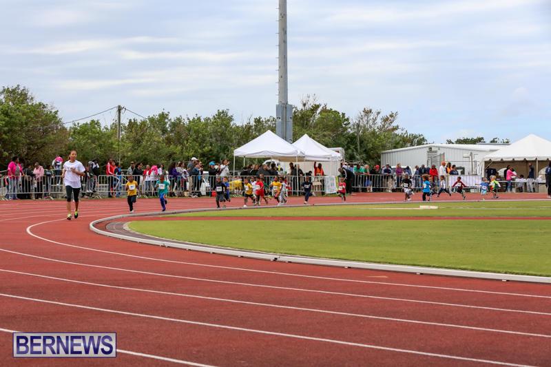 Telford-Electric-Magic-Mile-Bermuda-February-27-2016-67