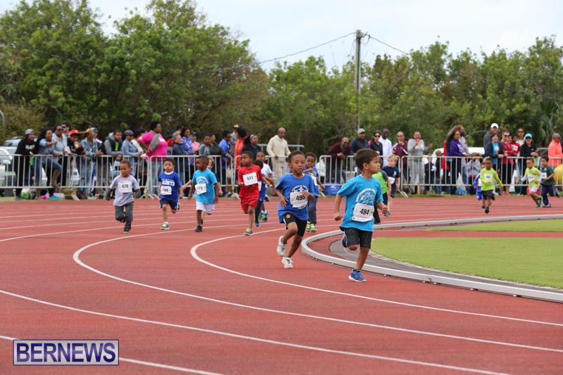 Telford-Electric-Magic-Mile-Bermuda-February-27-2016-87