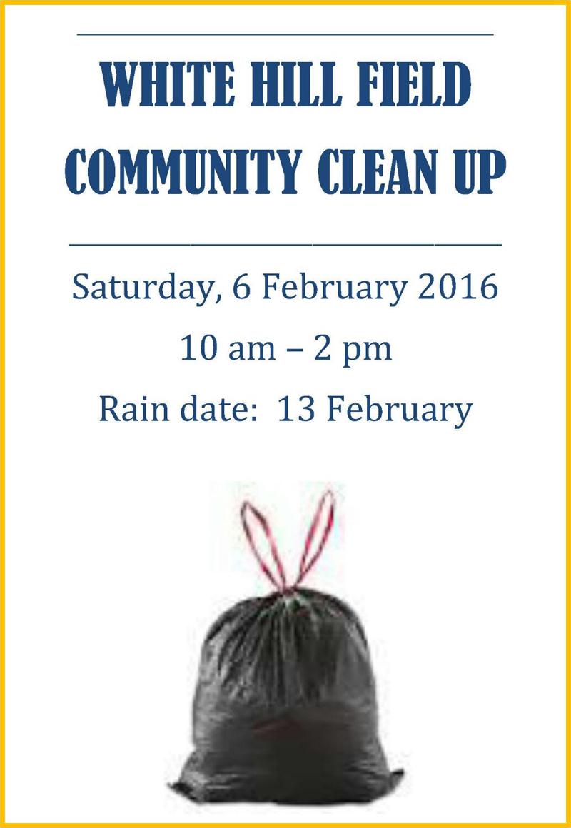 White Hill Field Community Clean Up Bermuda Feb 4 2016 2