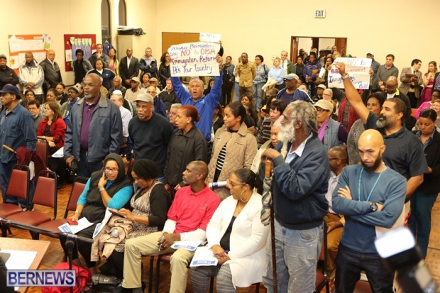protest at town hall bermuda feb 2016 (2)