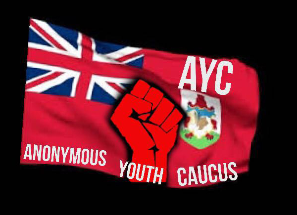 AYC Anonymous Youth Caucus Bermuda March 17 2016