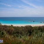 Beach Art Bermuda, March 19 2016-2