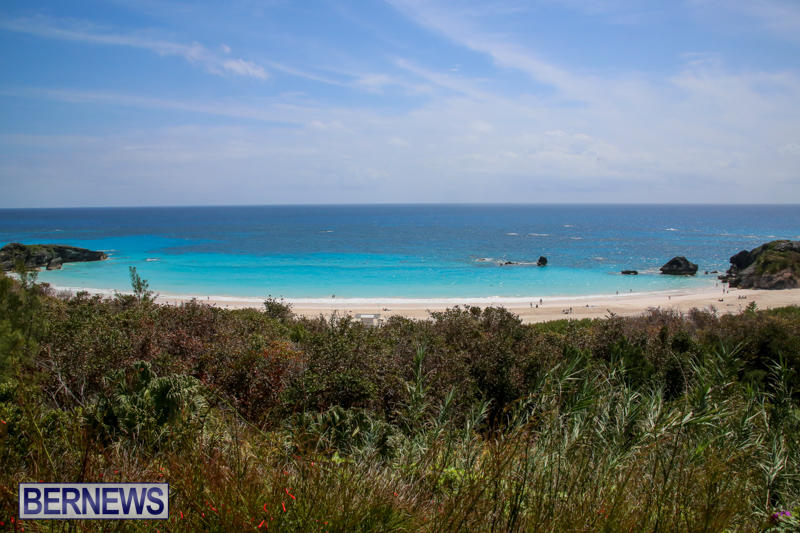 Beach-Art-Bermuda-March-19-2016-2