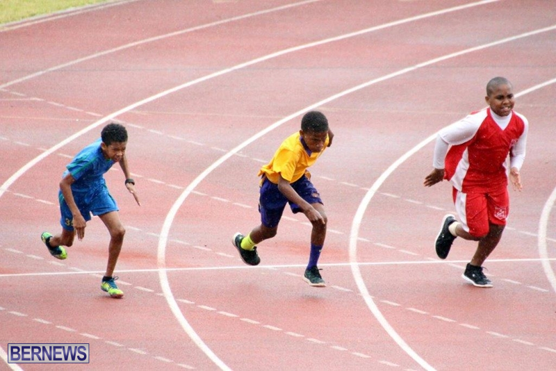 Bermuda-Athletics-Mar-2016-1