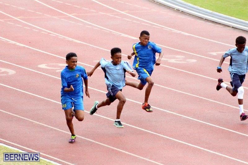 Bermuda-Athletics-Mar-2016-2