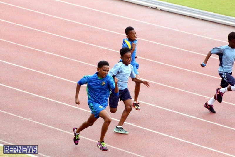 Bermuda-Athletics-Mar-2016-3