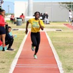 Bermuda Athletics  Mar 2016 (8)