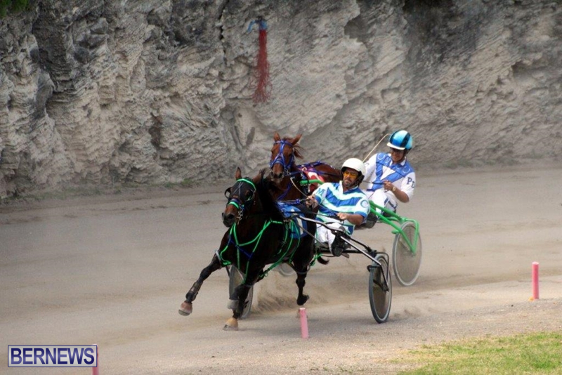 Bermuda-Harness-Pony-Racing-10-Mar-11